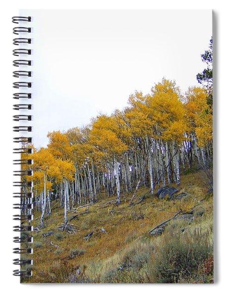 Golden Stand Spiral Notebook
