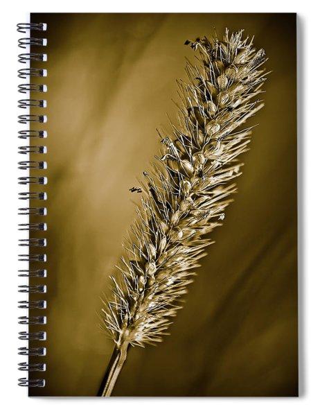 Grass Seedhead Spiral Notebook