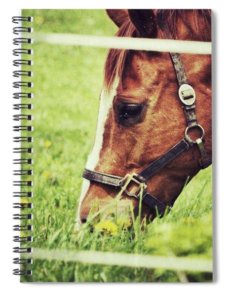Grazing Spiral Notebook