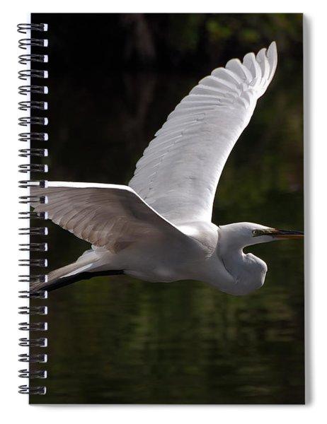Great Egret Flying Spiral Notebook