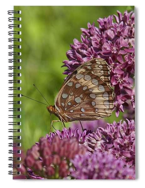 Great Spangled Fritillary Din194 Spiral Notebook