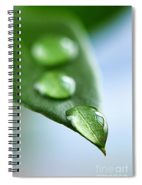 Green Leaf With Water Drops Spiral Notebook