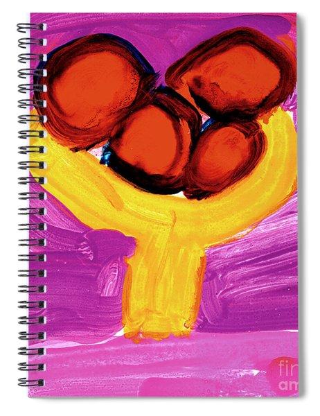 Happy Fruit Spiral Notebook