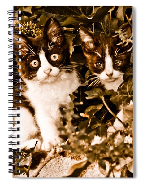 Athens, Greece - Haunted Spiral Notebook