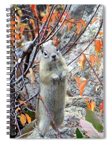 Hey There Spiral Notebook