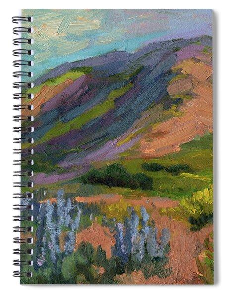 High Desert Spring Spiral Notebook