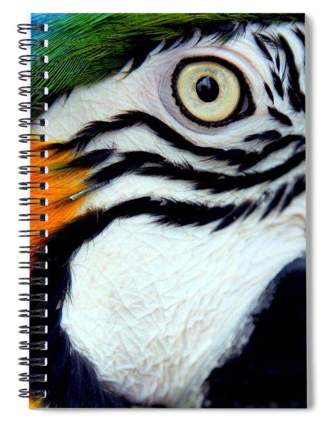 His Watchful Eye Spiral Notebook