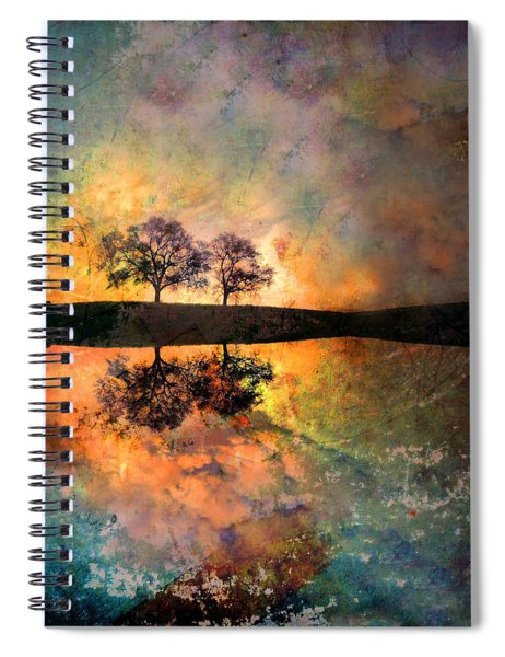 How Trees Reinvent The Morning Spiral Notebook