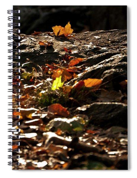 How We Should Leave... Spiral Notebook
