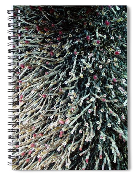 Hydrothermal Tubeworms Spiral Notebook