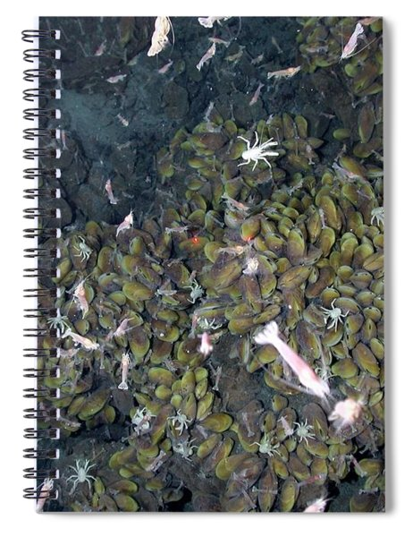Hydrothermal Vent Community Spiral Notebook