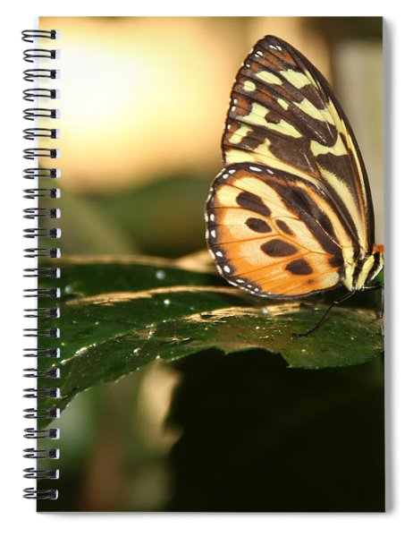 I'm Going Places Spiral Notebook
