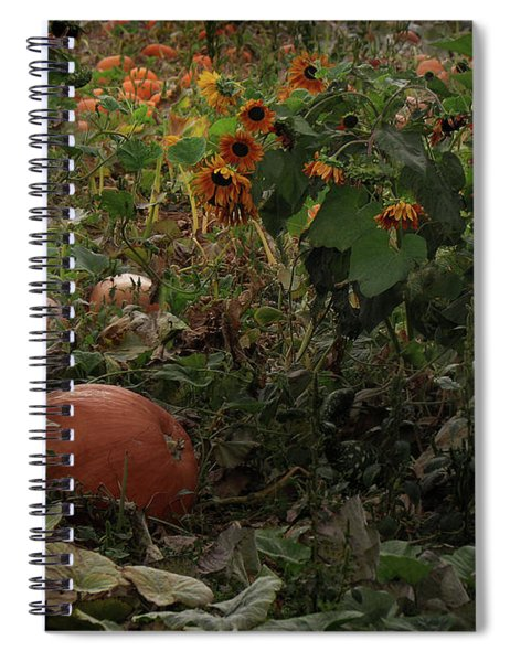 In The Shades Of An Autumn Sky Spiral Notebook