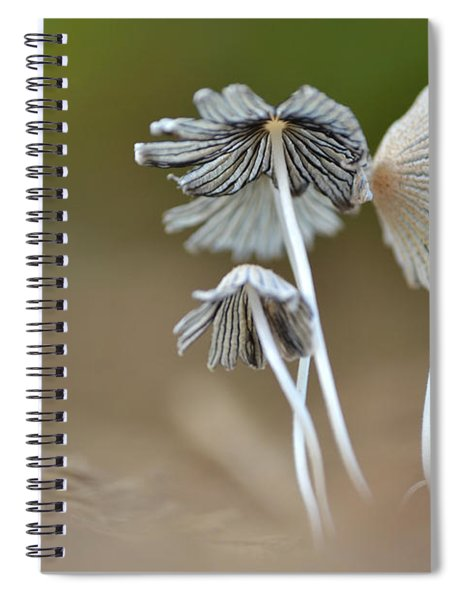 Ink-cap Mushrooms Spiral Notebook