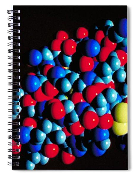Insulin Molecule Spiral Notebook