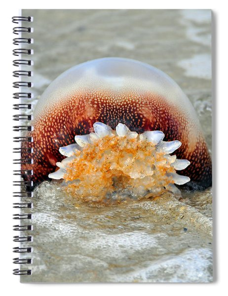 Jelly In A Jam Spiral Notebook