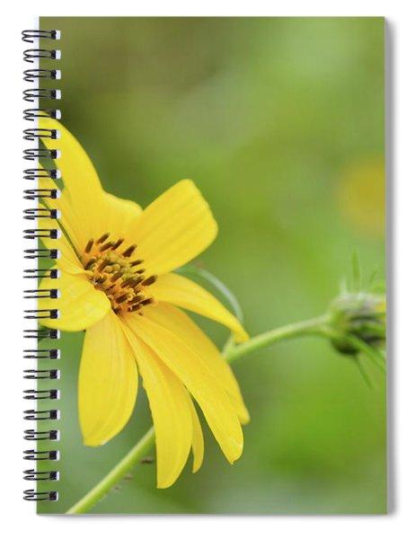 Jerusalem Gold Spiral Notebook
