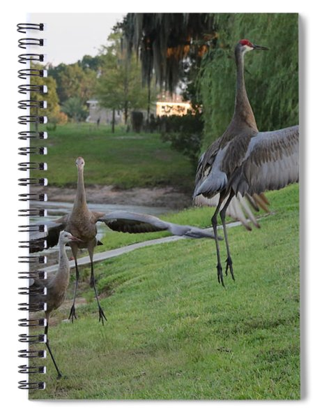 Jump Up Like This Spiral Notebook