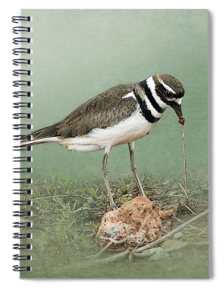 Killdeer And Worm Spiral Notebook