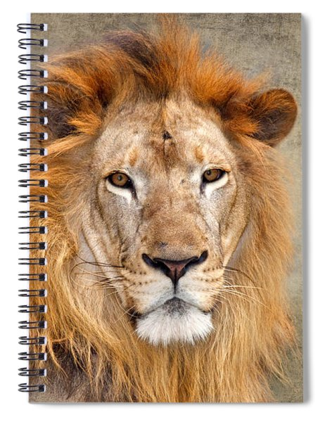 King Of Beasts Portrait Of A Lion Spiral Notebook
