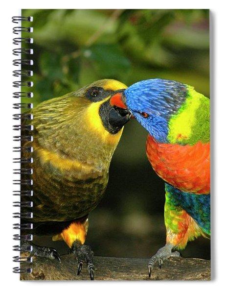 Kissing Birds Spiral Notebook
