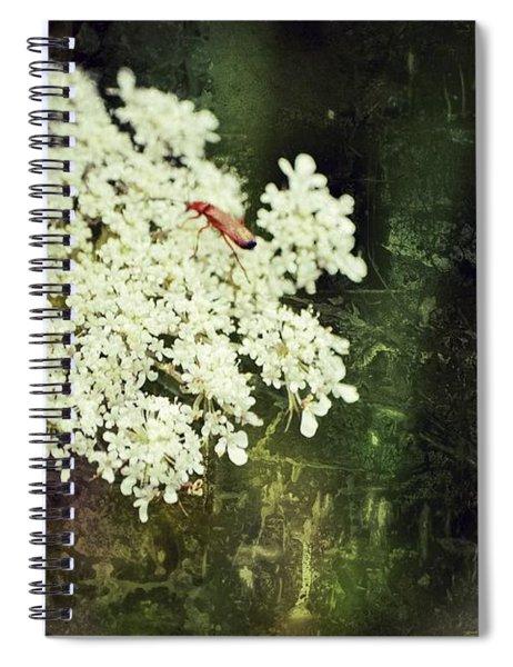 Lacy Anne Spiral Notebook