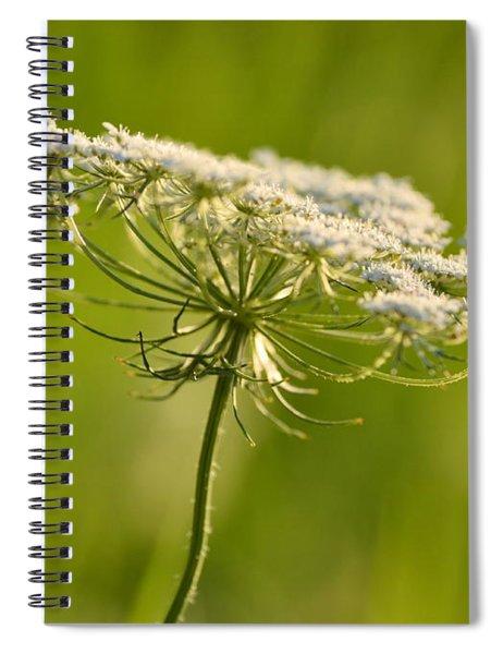 Lacy White Flower Spiral Notebook