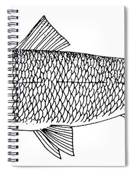 Lake Whitefish Spiral Notebook