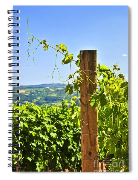 Landscape With Vineyard Spiral Notebook