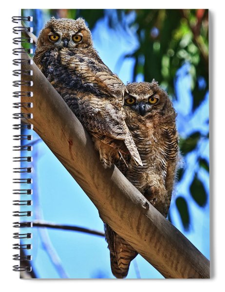 Lifes A Hoot Spiral Notebook