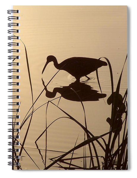 Limpkin At Dawn Spiral Notebook