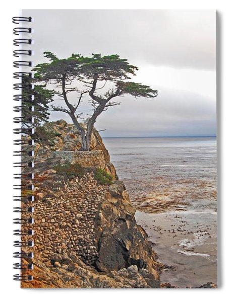 Lone Cypress Spiral Notebook