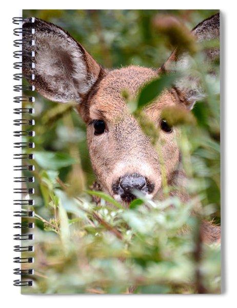Look What I Found In My Garden Spiral Notebook