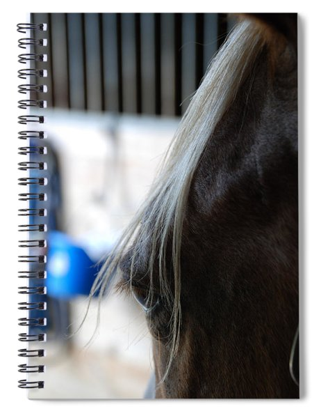 Looking Forward Spiral Notebook