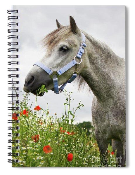 Lulu In The Poppy Field Spiral Notebook