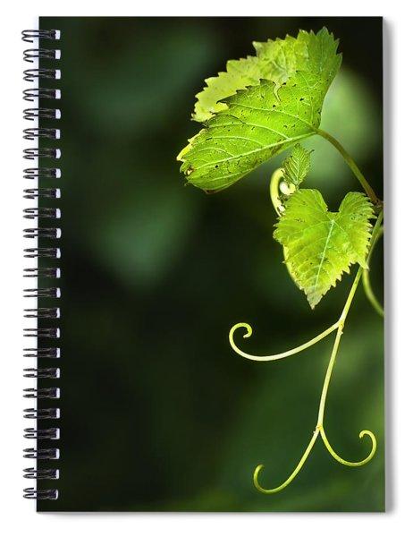 Memories Of Green Spiral Notebook