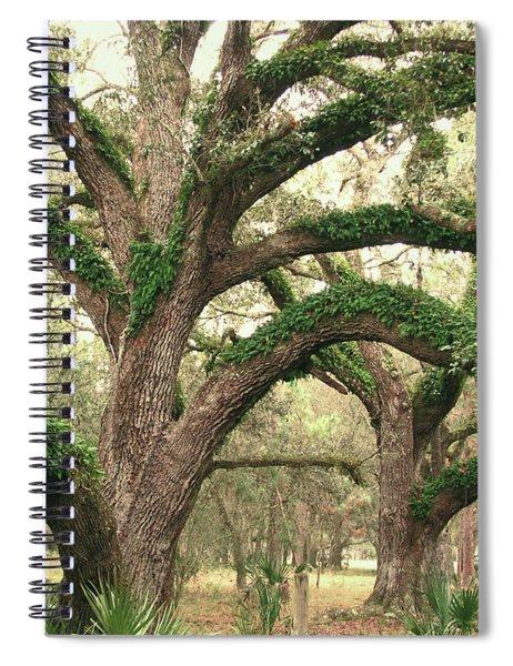 Mighty Oaks Spiral Notebook