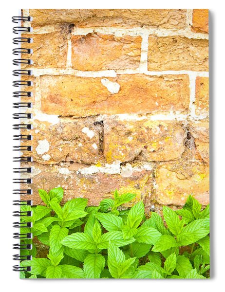 Mint Spiral Notebook