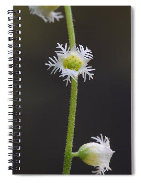Miterwort Flowers Spiral Notebook