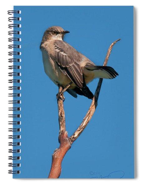 Mock One Spiral Notebook