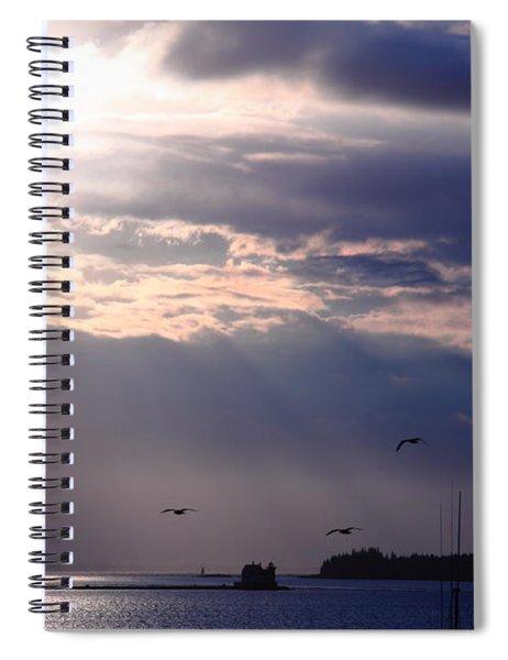 Moonlight Flight Spiral Notebook