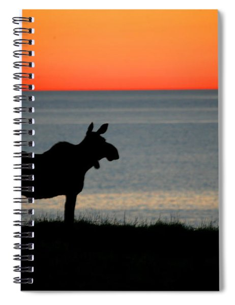 Moose Silhouetted At Sunset, Gros Morne Spiral Notebook