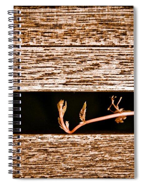 Albuquerque, New Mexico - New Growth Spiral Notebook