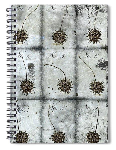 Nine Seed Pods Spiral Notebook