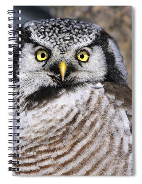 Northern Predator Spiral Notebook