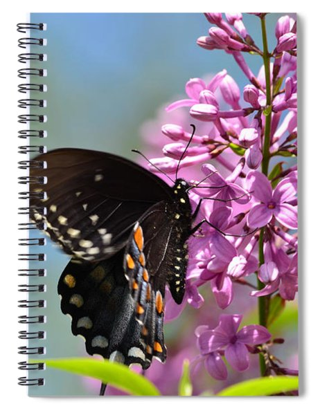 Nothing Says Spring Like Butterflies And Lilacs Spiral Notebook
