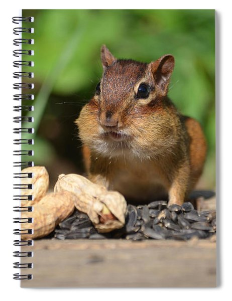 Now This Is A Breakfast Spiral Notebook
