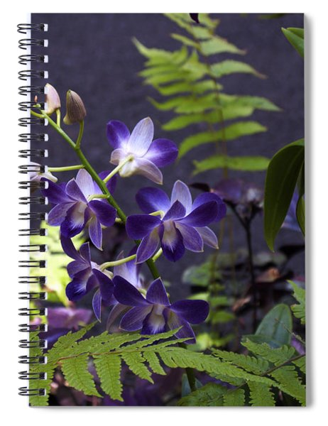 Orchid Study Iv Spiral Notebook