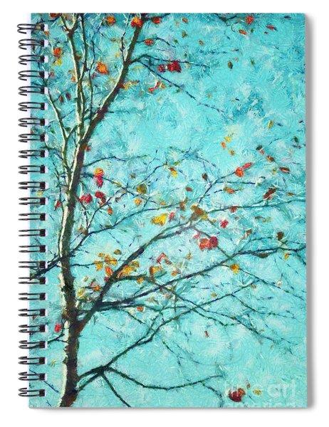 Parsi-parla - D01d03 Spiral Notebook