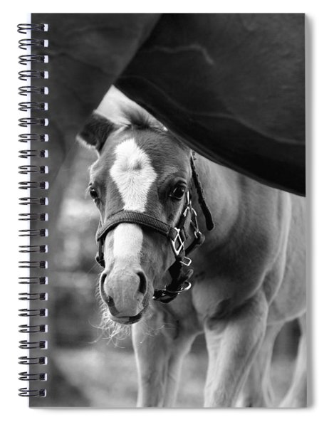 Peek'a Boo - Black And White Spiral Notebook
